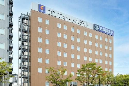 . Comfort Hotel Tsubamesanjo