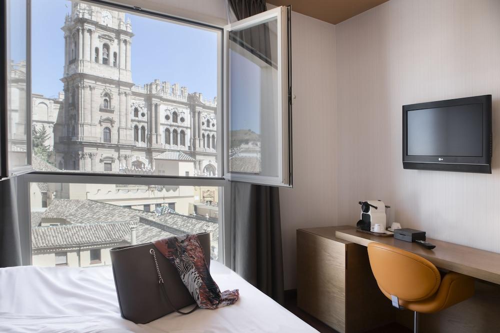 https://i.travelapi.com/hotels/2000000/1750000/1742100/1742058/9ac23eae_z.jpg