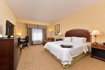 Room, 1 King Bed, Accessible, Non Smoking (Mobility & Hearing, Bathtub)