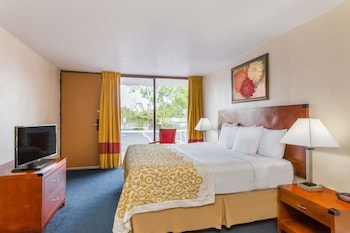 Room, 1 King Bed, Accessible, Non Smoking (Mobility/Hearing,roll-in shower)