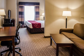 Mobile Vacations - Comfort Suites Saraland - Property Image 1