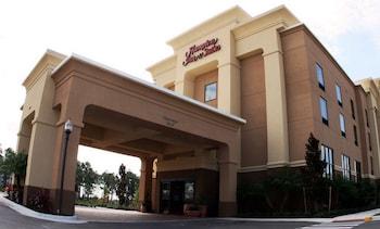 奧蘭多約翰揚林蔭道南方公園歡朋套房飯店 Hampton Inn & Suites Orlando-John Young Pkwy/South Park