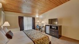 Standard Oda, 1 En Büyük (king) Boy Yatak, Buzdolabı Ve Mikrodalga