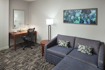 Junior Suite, 1 King Bed, Accessible (Roll-In Shower)
