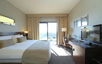Standard Tek Büyük Veya İki Ayrı Yataklı Oda, Balkon, Nehir Manzaralı