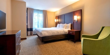 Suite, 1 King Bed with Sofa bed, Non Smoking (Parlor)