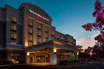 萬豪恒庭大劇場春丘套房 Springhill Suites by Marriott Hampton Coliseum