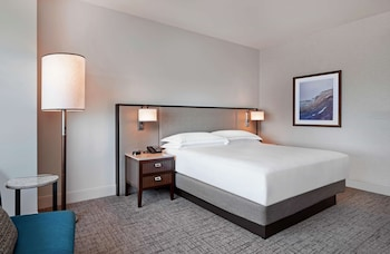 Room, 1 King Bed, City View (Bay/City View)