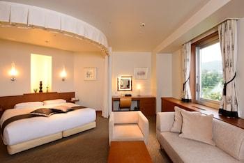 Premium Tek Büyük Yataklı Oda (executive)