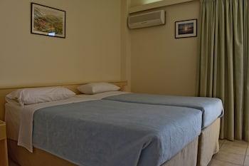 Tek Büyük Veya İki Ayrı Yataklı Oda, Dağ Manzaralı (with Window)