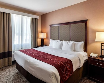 Guestroom at Comfort Suites Plano East - Richardson in Plano