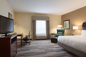 Room, 1 King Bed, Accessible (Mobility & Hearing, 3X3 Shower)