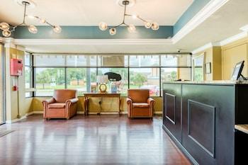 奥蘭多貝萊爾飯店 Hotel Bel-Air Orlando