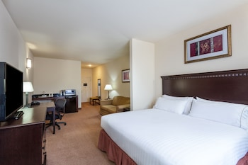 Holiday Inn Express Hotel & Suites Clarksville - Guestroom  - #0