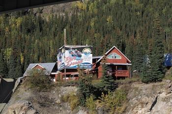 Cabins at Denali