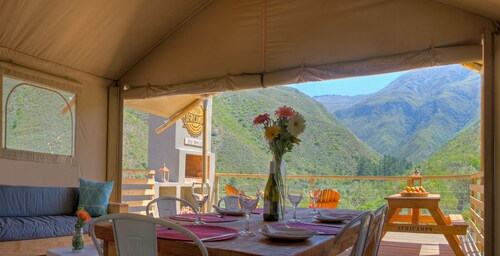 Pat Busch Mountain Reserve, Cape Winelands