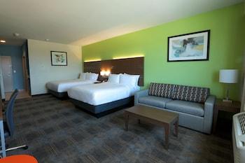 德里平斯普林斯智選假日套房飯店 - 奧斯丁區 Holiday Inn Express & Suites-Dripping Springs - Austin Area