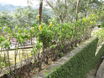 PINE BREEZE COTTAGES Garden