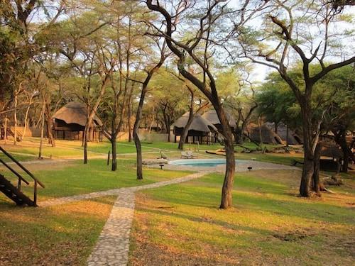 The Tree Lodge at Sikumi, Hwange
