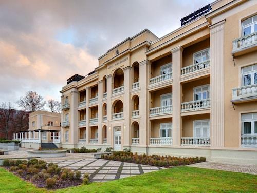 . Hotel Aleksander Medical & SPA