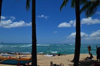 Hotel - Waikiki Banyan #T1-910 by RedAwning