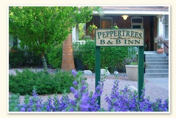 Peppertrees Bed & Breakfast Inn photo