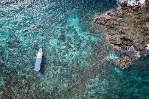 . Murex Manado Dive Resort