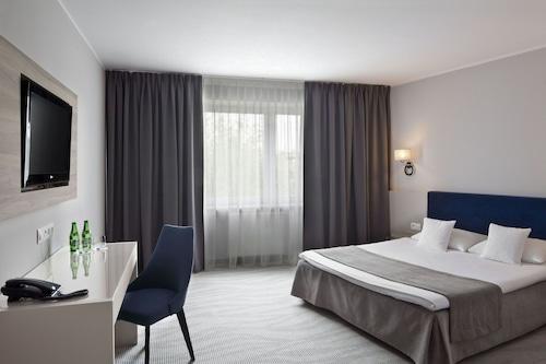 . Hotel Witkowski