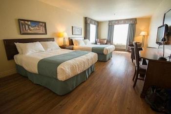 Hotel - L'oiseliere St-nicolas