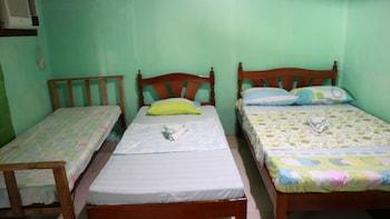 DHAYNE BED AND BREAKFAST - HOSTEL Room