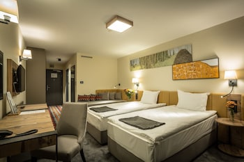 Superior King or Twin Room, Mountain View