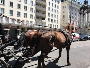 Heart of Vienna Hoher Markt