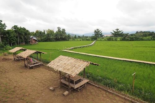 Ton Lang Homestay, Pua