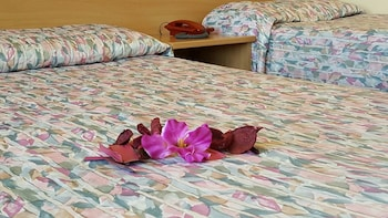 Hotel - Hotel Phalesia