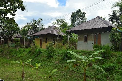 Monkey House, Pai