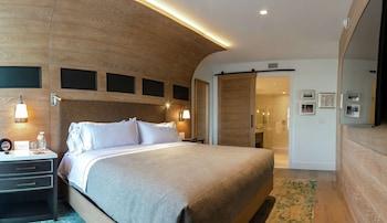 Suite, 1 King Bed (Travis)