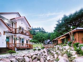 カンヌン パイン ペンション (Gangneung Pine Pension)