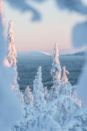 Ylläs Log Cabins, Lapland