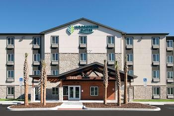 坦帕布蘭登伍德斯普林套房飯店 WoodSpring Suites Tampa Brandon