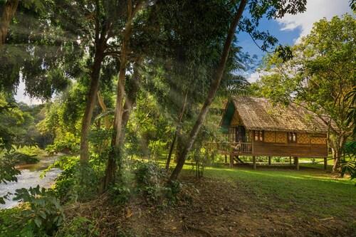 . Our Jungle Camp - Eco Resort