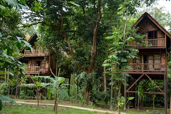 Two-storey Treehouse With Jungle View
