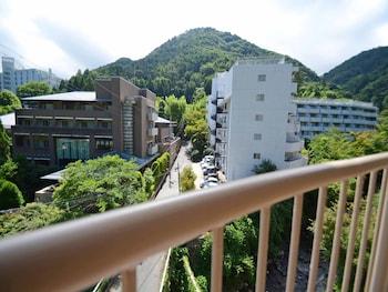 OKUNO HOSOMICHI View from Room