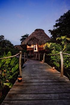 Hotel - Cotton Tree Lodge