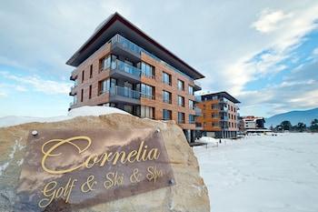 Cornelia Boutique & Spa