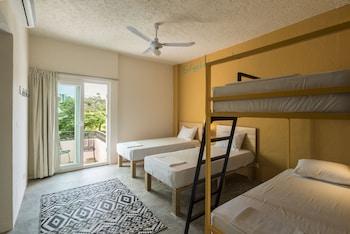 4-Bed Dorm Plus