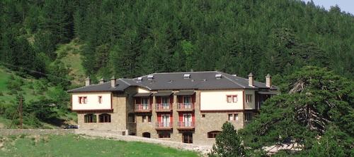 . Vasilitsa Spa Resort