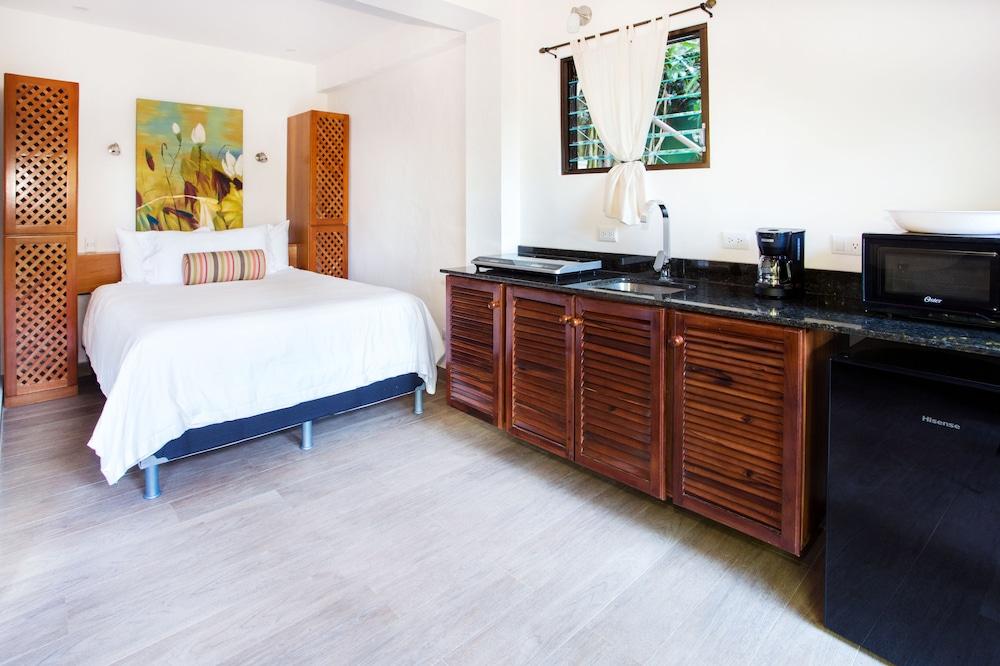 https://i.travelapi.com/hotels/22000000/21160000/21155000/21154969/4c7da30a_z.jpg