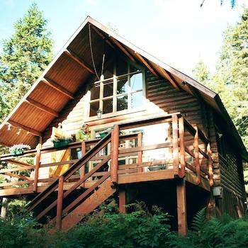 Alyeska Hideaway Log Cabins-Alyeska Cabin