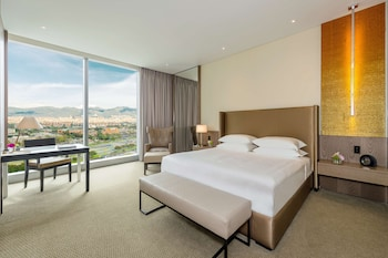 Room, 1 King Bed, View (Andes View)