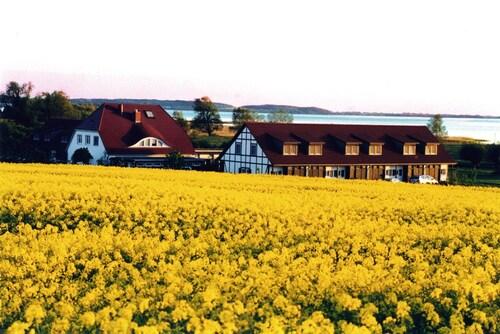 . Hotel Der Wilde Schwan